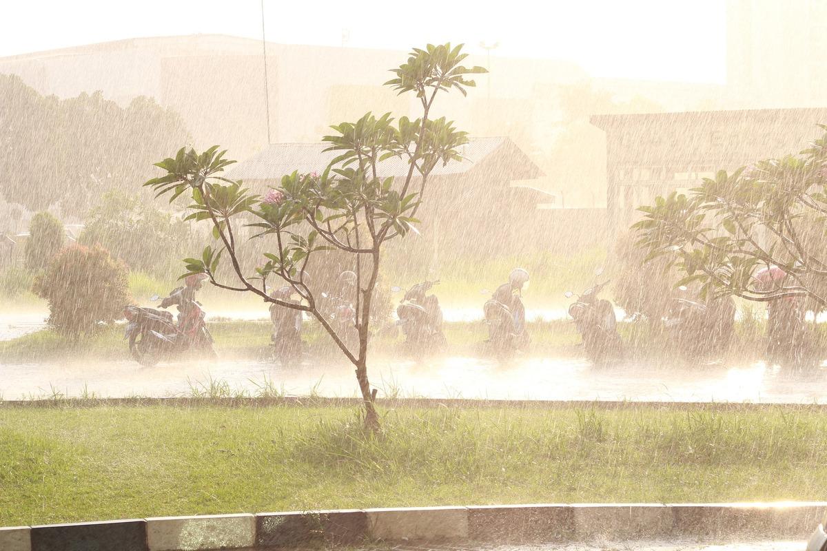downpour-1856418_1920.jpg